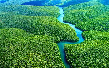 троп. леса амазонки.jpg