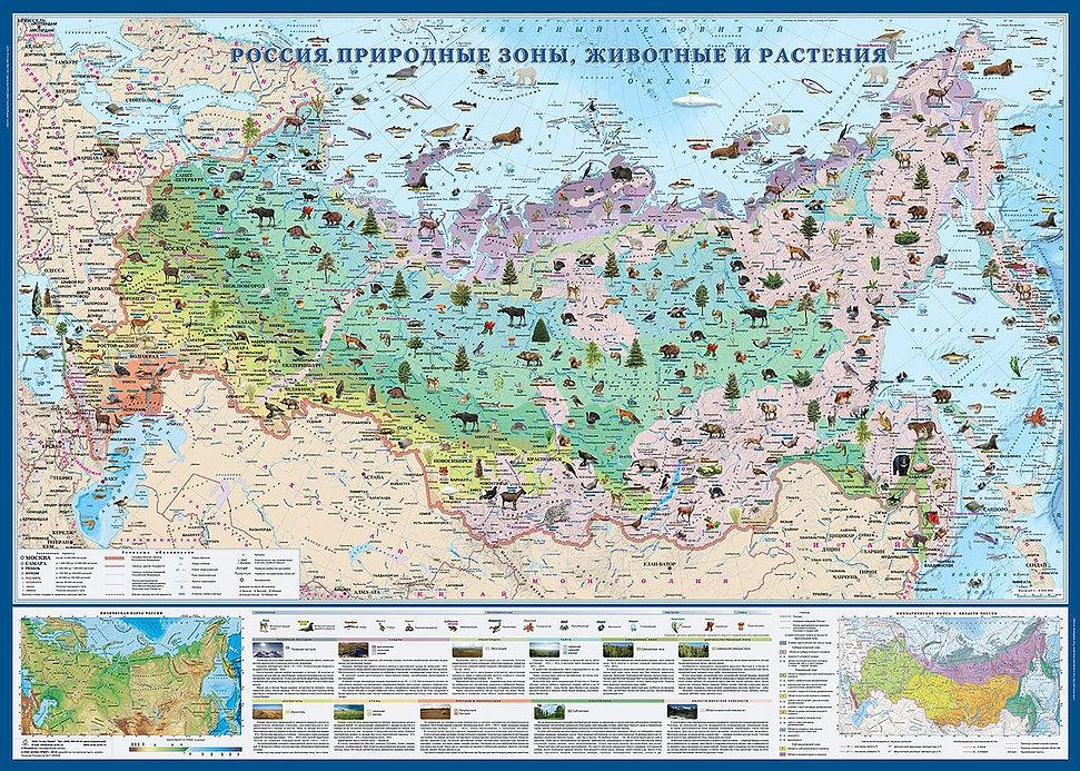 Флора и фауна России...jpg