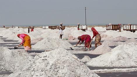 Индия , соль.png