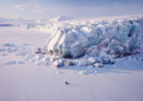 Арктическая зима.jpg