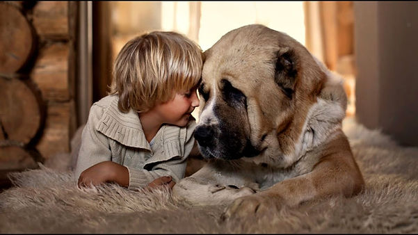 ребенок с собакой.jpg