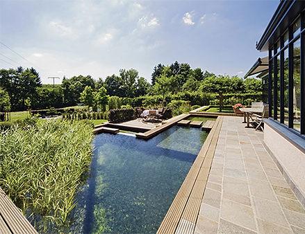 бассейн возле дома.jpg
