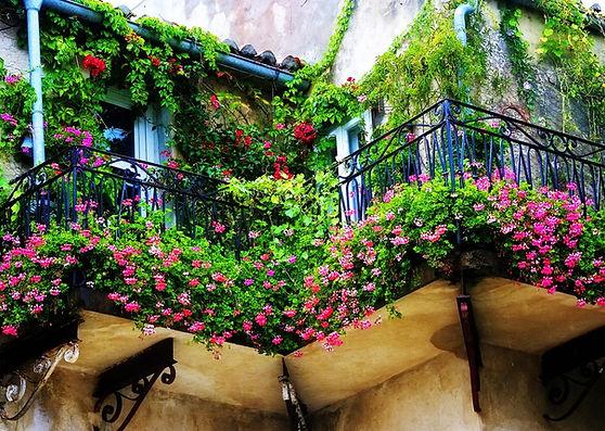 дом с вьющимися растениями и цветами.jpg