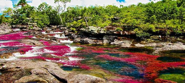 Река-Пяти-Цветов.jpg