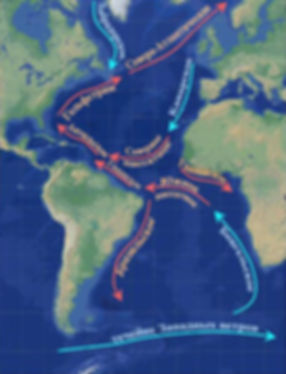 атлантические течения.jpg