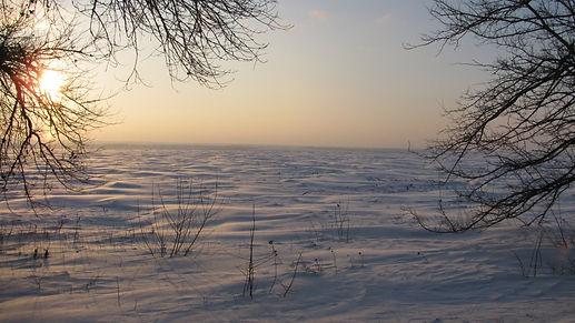 зимняя степь...jpg