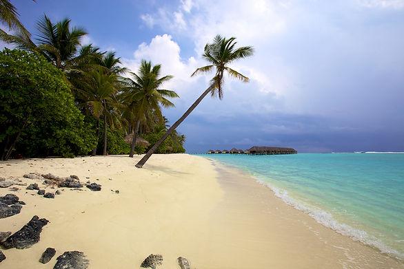отдых на мальдивских островах.jpg