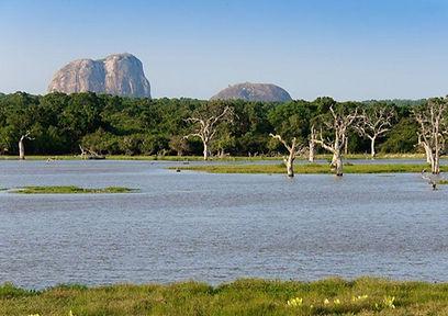 Озеро Виктория расположено в Восточной А