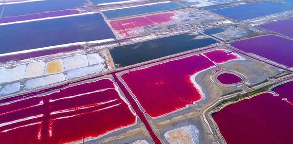 Озеро Яньху в Китае.jpg