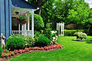 газон возле дома.jpg