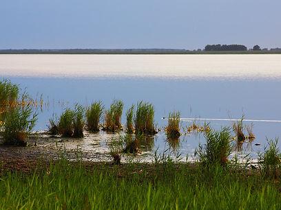 озеро чаны.jpg