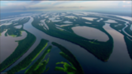 река амазонка.png