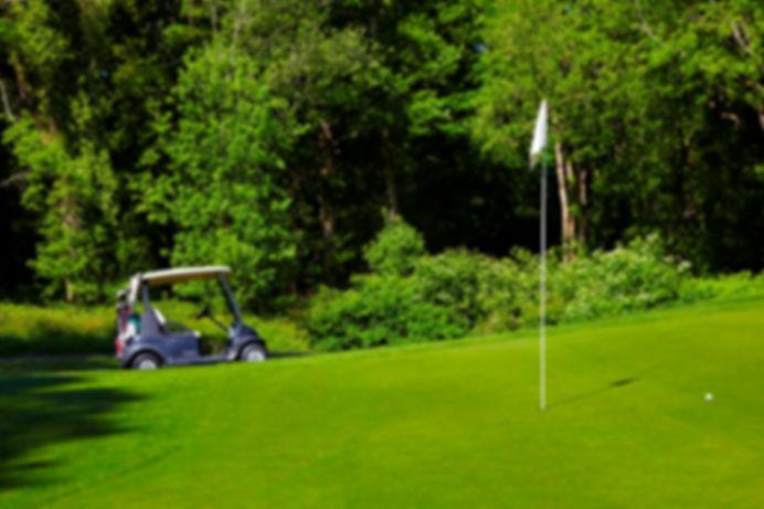 спортивный газон. трава для газона