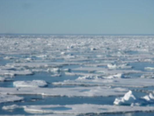 Северный Ледовитый океан.jpg