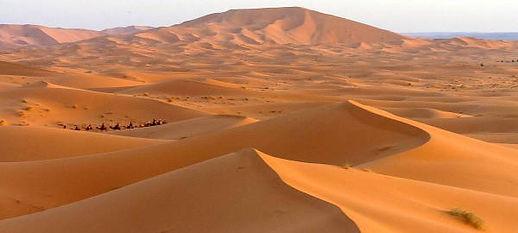 пустыня Сахара.jpg