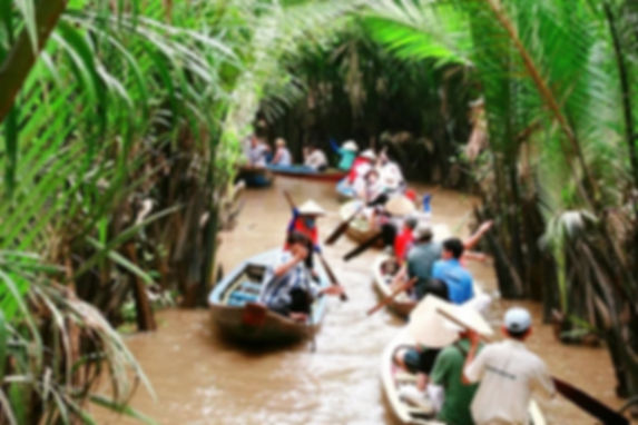 Дельта реки Меконг –.jpg