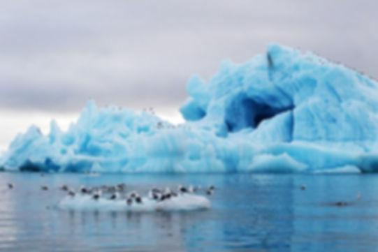 Северный Ледовитый океан .jpg