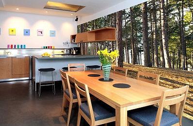 кухня с обоями природы.jpg