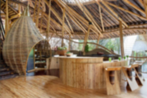 бамбуковые дома на о.Бали.jpg