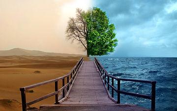 две стороны жизни в фотографиях.jpeg