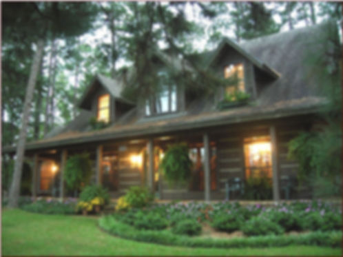 деревянный дом в лесу.jpg