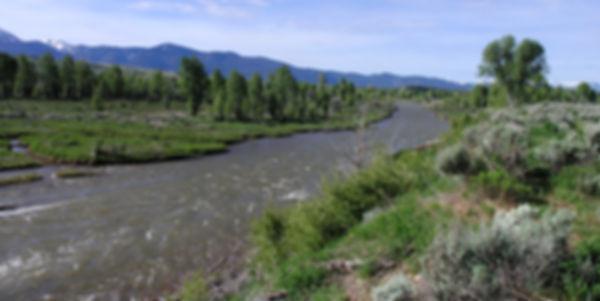 Река Gros Ventre.jpg