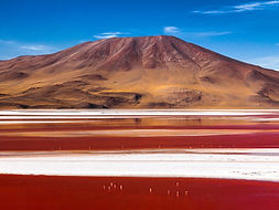 красное озеро Лагуна Колорада.jpg