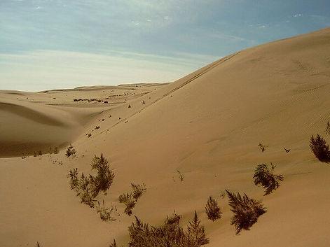 пустыня Гоби.jpg