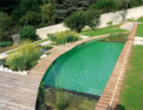 эко бассейн на даче.jpg