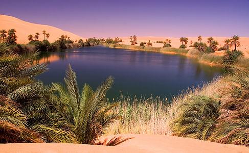 оазис в пустыни.jpg
