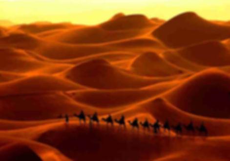 сахара пустыня.jpg