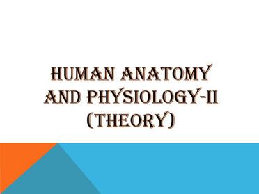 HUMAN ANATOMY AND PHYSIOLOGY-II