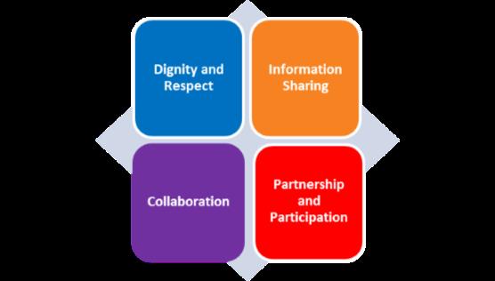 PFCC principles.png