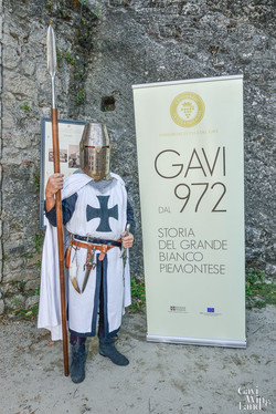 Gavi dal 972
