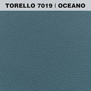TORELLO OCEANO.jpg