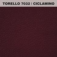 TORELLO CICLAMINO.jpg