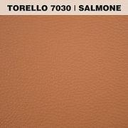 TORELLO SALMONE.jpg