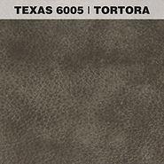 TEXAS TORTORA.jpg