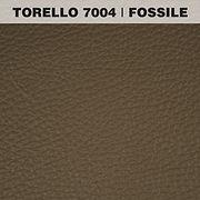 TORELLO FOSSILE.jpg