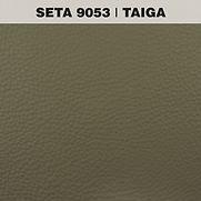 SETA TAIGA.jpg