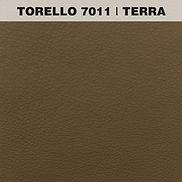 TORELLO TERRA.jpg