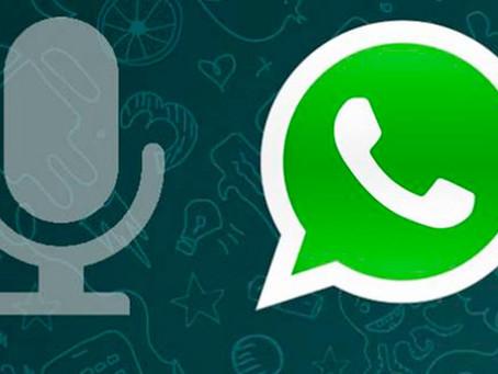 WhatsApp, i trucchi dei professionisti:Come ascoltare le note vocali di WhatsApp prima di inviarle