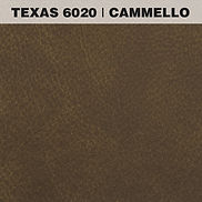 TEXAS CAMMELLO.jpg