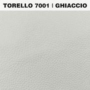 TORELLO GHIACCIO.jpg