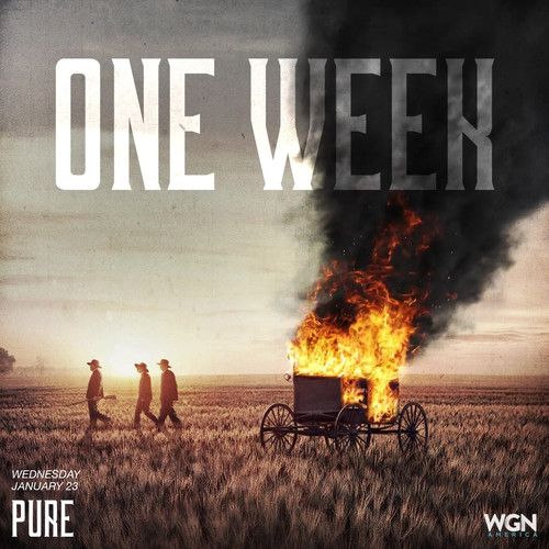 Pure 1wk Poster.mp4