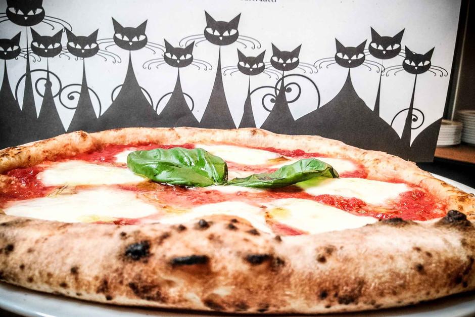 pizza-margherita-pizzeria-Dodici-Gatti-M