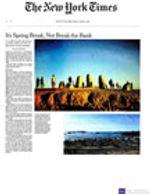 NYTimes_BVEVPVLS_Mar2020.jpg