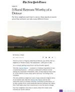 NYTimesOnline_PuroVik_Dec2019.jpg