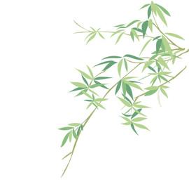 MB bamboo element.jpg