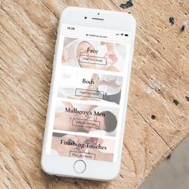 Mulberry's website on phone.jpg